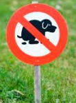 If your dog doesn't obey signs